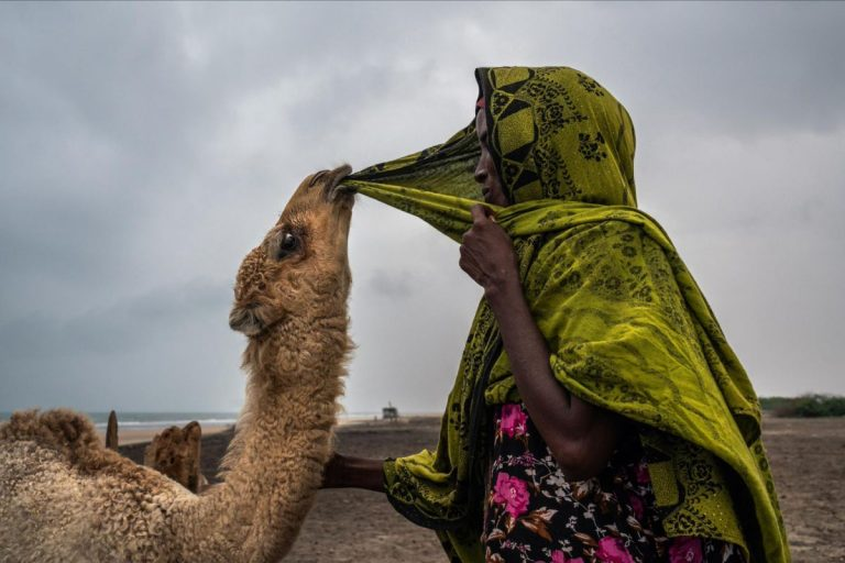 For these Women, an Age-Old Way of Life is Ending in the Horn of Africa